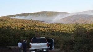 Eskişehirdeki orman yangını kontrol altında (2)