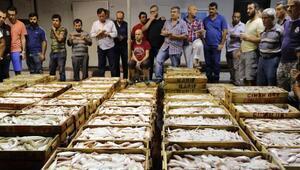 Balık halinde 1 kilo tavuk fiyatına bir kasa balık
