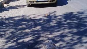 Otomobilin üzerine kaya parçası düştü