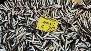 Kestane karası fırtınası balık fiyatlarını artırdı