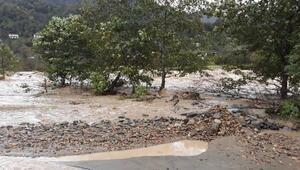 Arhavide şiddetli yağmur sele yol açtı