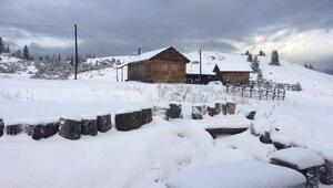 Doğu Karadenizde kar etkisi
