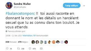 Fransa'da cinsel tacizlere karşı domuzunu ifşa et kampanyası