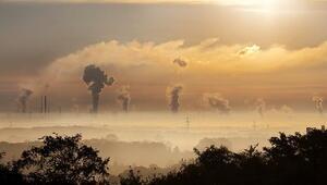 Çevre kirliliği savaşlardan, felaketlerden ve hastalıklardan daha ölümcül