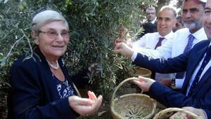 Prof.Dr. Canan Karatay: Zeytin ve zeytinyağı tüketen hastalanmaz