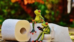 Uzmanlar tuvalet kağıdı yerine ıslak mendil kullanın diyor