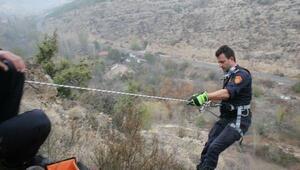 120 metrelik kayalıklarda 5 gündür mahsur köpek kurtarıldı