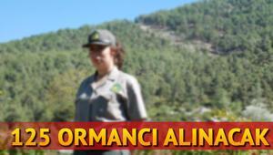Orman Genel Müdürlüğü 125 personel alımı yapıyor