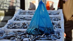 Zonguldakta hamsinin kilosu 1.5 liraya düştü