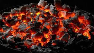 Doların ateşi kömürü de yaktı
