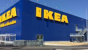 Her şey bir kibritle başladı Dünyanın en büyük şirketi böyle kuruldu...