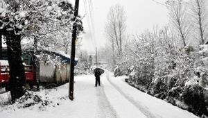 Bartında mevsimin ilk karı yağdı