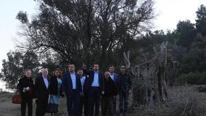 AK Partili Kayadan Körfez Geçişine karşı çıkanlara tepki