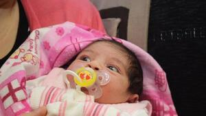 Annelik, embriyo biyopsisi ile geldi