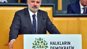 HDPli Bilgen: OHAL değil demokrasi diyoruz