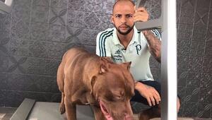 Felipe Melodan flaş itiraf