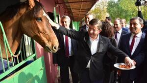 AK Partili Davutoğlu: New York'ta sunulan belgelerin bizim açımızdan hükmü yoktur