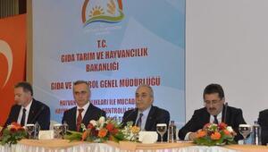 Bakan Fakıbabadan et ithalatını bitirecek talimat: 500 bin buzağı kurtarılacak