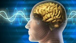 Temporal Lob Epilepsi hastalığı nedir TLE hastalığının temel özellikleri neler