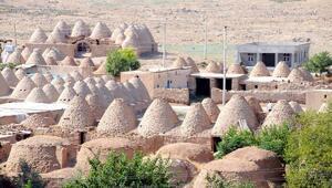 Harrandaki kümbet evler, yok olmaması için korunacak
