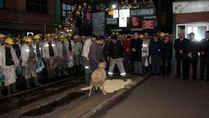 Zonguldakta ölen maden işçisi dualarla anıldı