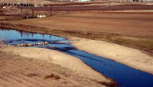 Binlerce balık telef olmuştu... Dicle Nehrinde şimdi de su kalmadı