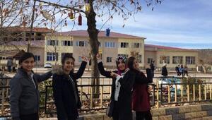 Öğrencilerden kuşlar için ağaçlara yuva