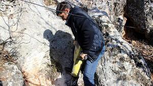6 gündür kayalıklara sıkışan avcı köpeği kurtarılmayı bekliyor