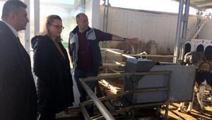 AB onaylı süt çiftliği ve çiğ süt satışı izni ön denetimleri tamamlandı