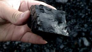350 milyar dolarlık kara elmas