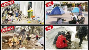 4 mevsim mülteci