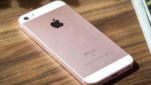 Appleın yeni minik bombası iPhone SE 2 nasıl olacak