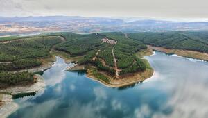 Karadenizin en özel cennet köşesi:  Samsun Tabiat Parkları