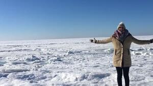 ABDde okyanus dondu