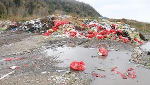 AB plastik çöpten vergi alabilir
