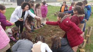 Minik öğrencilere hobi bahçesinde eğitim