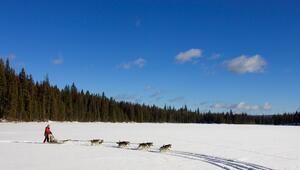 Kanada'nın acımasız doğasına yakışan kayak merkezleri