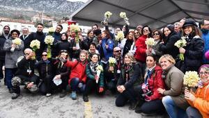Karaburun Nergis Festivali renkli görüntülere sahne oldu
