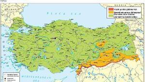 Birleşik Krallık'tan Türkiye'ye seyahat uyarısı: Suriye sınırından ve Diyarbakır'dan uzak durun