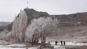 Karsta ağaçlar kırağı tuttu