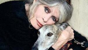 Brigitte Bardot: #MeeToo kadınları sadece ünlü olmak istiyor