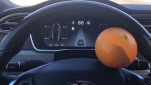 Teslayı portakalla kandırdı, büyük ses getirdi