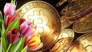 Yatırım devinden kritik uyarı: Bitcoin Laleyi de geçti