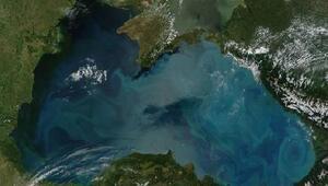 FAO Karadeniz bölgesinde tarım ticaretinin gelişimi için fon taahhüt etti