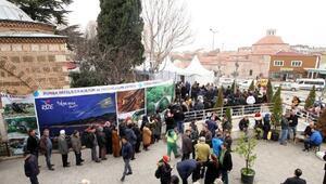 Bursa'da 1 ton hamsi, 2 saatte tükendi