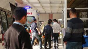 Zeytin Dalı Harekâtında 19uncu gün; 999 terörist öldürüldü (6)