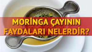 Moringa çayının faydaları nelerdir Nasıl kullanılır