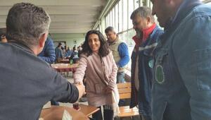 CHP'li Kayışoğlu: Şeker pancarını kurban etmeyelim