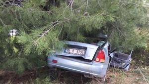 Ağaca çarpan otomobildeki sürücü ve eşi öldü
