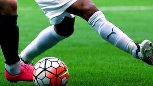 Süper Ligde 24 haftada 14 teknik direktör değişti